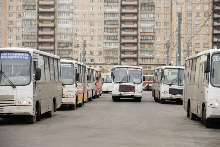 В Петербурге работают 265 коммерческих маршрута.