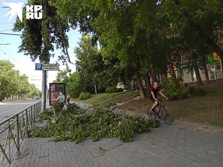 Сломанные уроганом ветки валялись по городу.