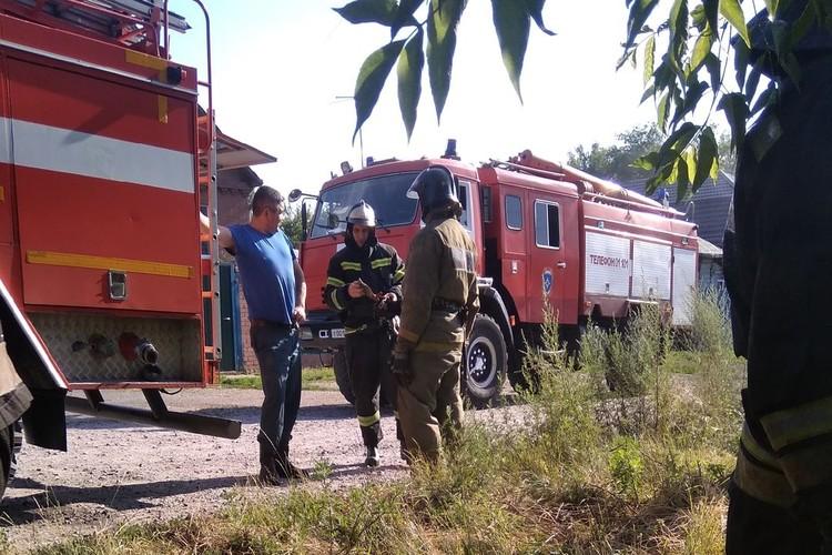 Пожарные вовремя успели приехать: животные не пострадали. Фото: Алена Святова