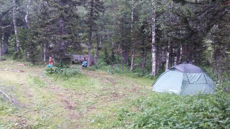 Палатка стояла в отдалении от того дерева, под которым погибли мужчины. Фото: ГСУ СК России по Красноярскому краю и РХ.