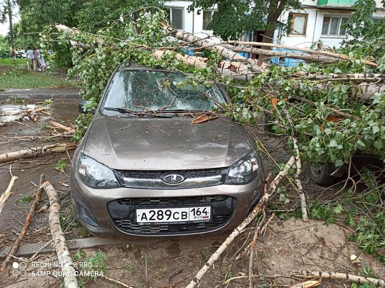 Деревья повредили несколько авто. Фото соцсетей