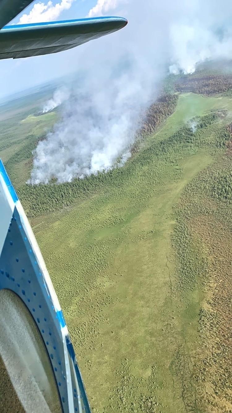Вот так выглядит пожар в Югре с высоты птичьего полёта. Фото: правительство Югры