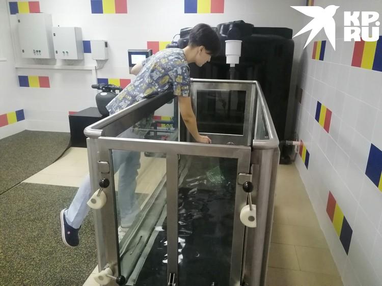Обязательная уборка тренажера. Фото: Анна ПАШАГИНА.