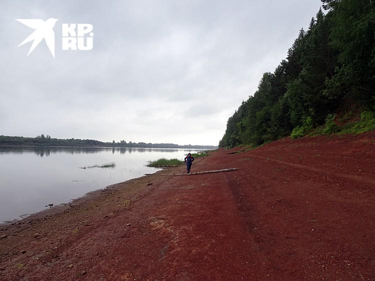 Так выглядит небольшой участок 25-тикилометровой береговой полосы, где покоятся парейазавры