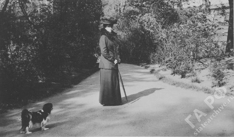 Маленький кинг-чарльз-спаниель Джимми принадлежал четвертой дочери Николая II – Анастасии. Фото: Государственный архив РФ