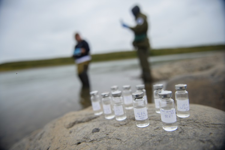 Отбор и консервацию проб ученые, имеющие многолетний опыт работы в Арктике, проводили строго по ГОСТу