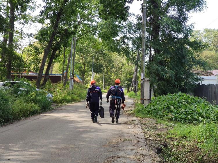 Энергетики признаются, чтобы полностью оправиться от ударов тайфунов, им пришлось еще 3 числа перейти на круглосуточную работу