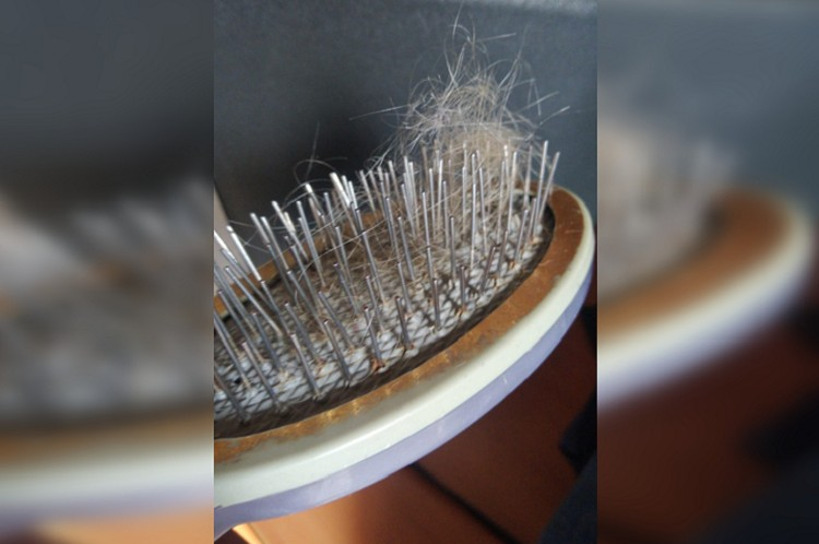 Теперь волосы выпадают от малейшего прикосновения. Фото: предоставлено героиней публикации