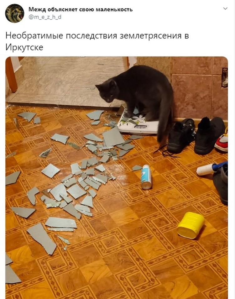 Очевидцы публикуют последствия землетрясения в социальных сетях