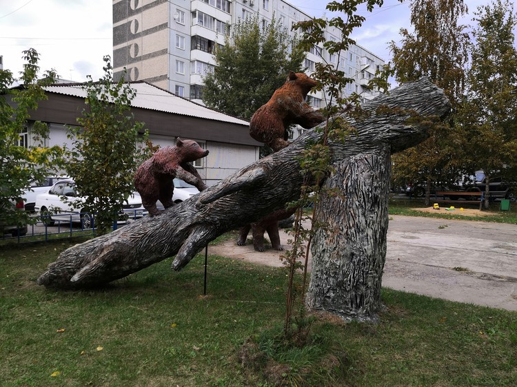 Медведи в Железнодорожном районе. Фото: Светлана Юдина.