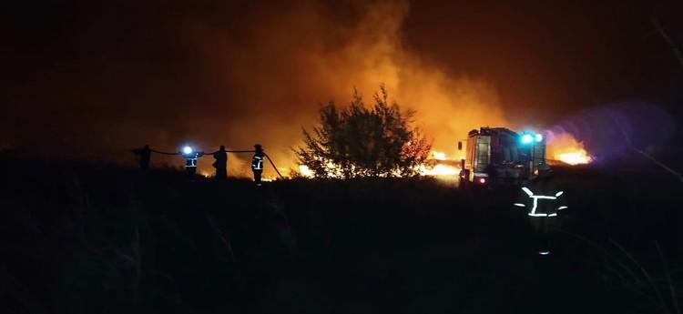 Огонь охватил площадь в 4500 квадратных метров. Фото: ГУ МЧС по РО