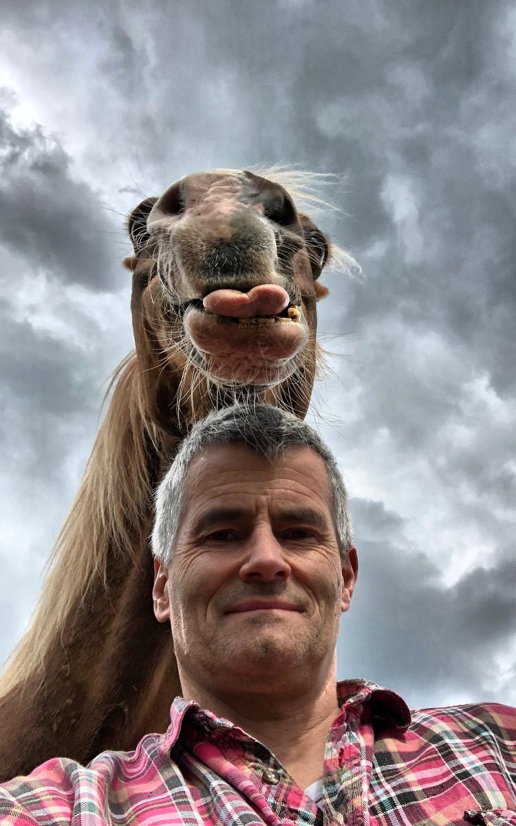 """""""Забавный конь"""". Автор: Peter von Shnen. Фото предоставлено организаторами конкурса"""