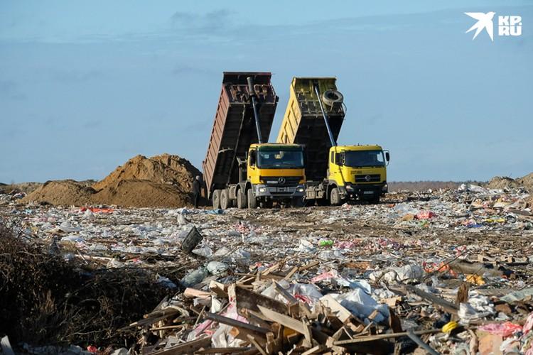 Губернатор заявил, что с 1 июля 2023 года мусорных полигонов в том виде, в каком они есть сейчас, больше не будет.