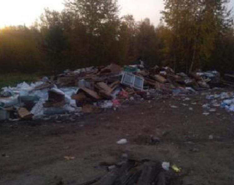 Раньше по контейнерной площадке был рассыпан мусор.