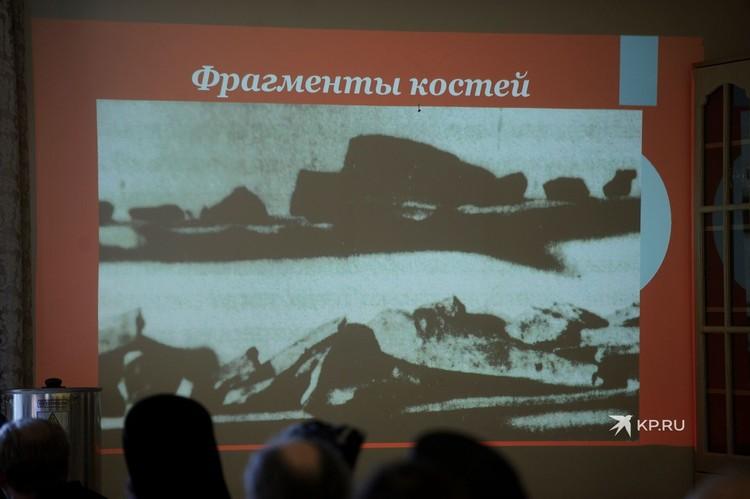 Фрагменты костей, найденные в 1918 году следователем Соколовым.