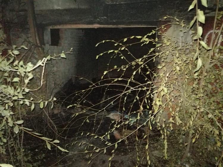 Следователи осмотрели место трагедии