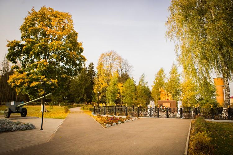 Масштабный проект реконструкции парка культуры и отдыха в поселке Теплое Тульской области подходит к завершению. Работы по благоустройству ведутся еще с 2018 года, и за это время количество посетителей парка увеличилось в 5 раз.
