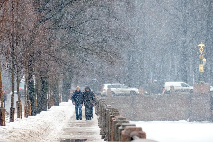 Снегопад будет сопровождаться сильным ветром.