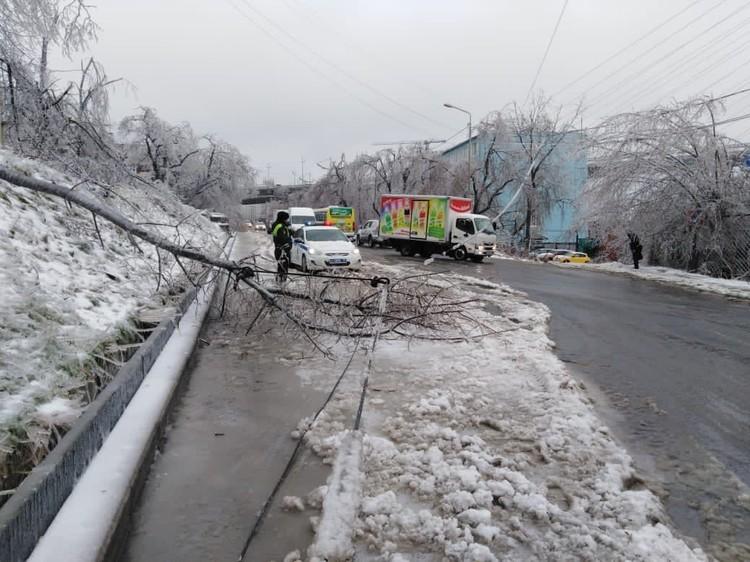 Из-за снега и льда в Приморье оборвались провода и повалились деревья. А дороги оказались отрезанными. Фото: ГУОБДД МВД России