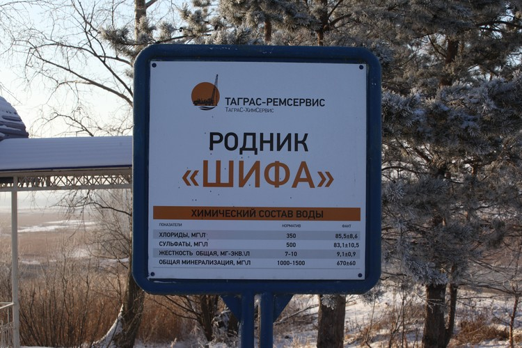 Фото: Антон Селезнев