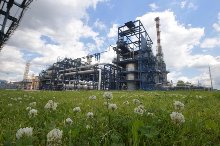 Ученые уверены, что у нас есть шанс побороться с Евросоюзом, снижая выбросы и, соответственно, трансграничные карбоновые сборы.