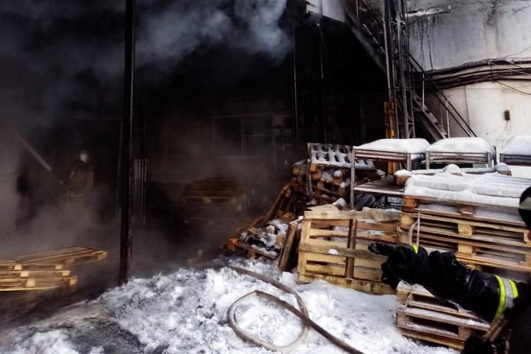 Общая площадь возгорания составила 720 квадратных метров