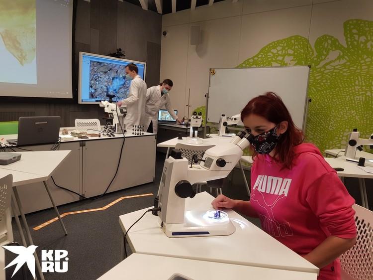 Школьники от семи лет снова могут посещать уроки по генетике, экологии и географии.