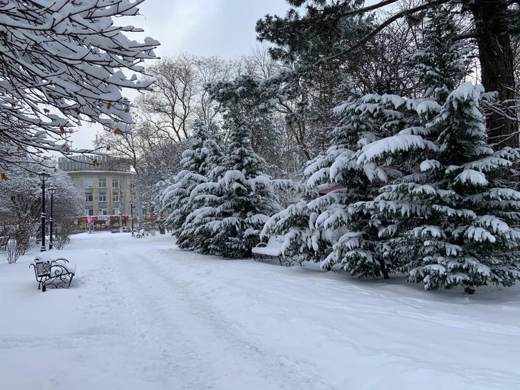 Для жителей Симферополя снегопад стал поводом для фотосессий