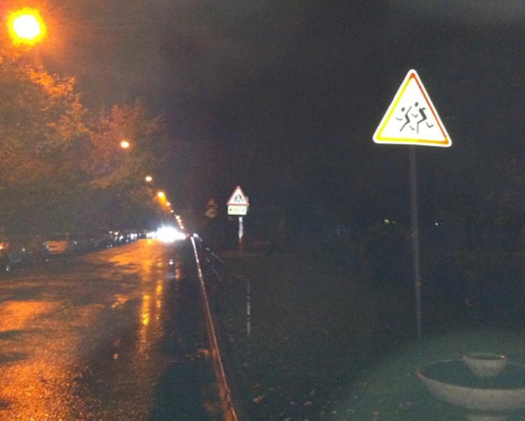 """При въезде на улицу Артамонова стоит предупреждающий знак """"Дети"""""""