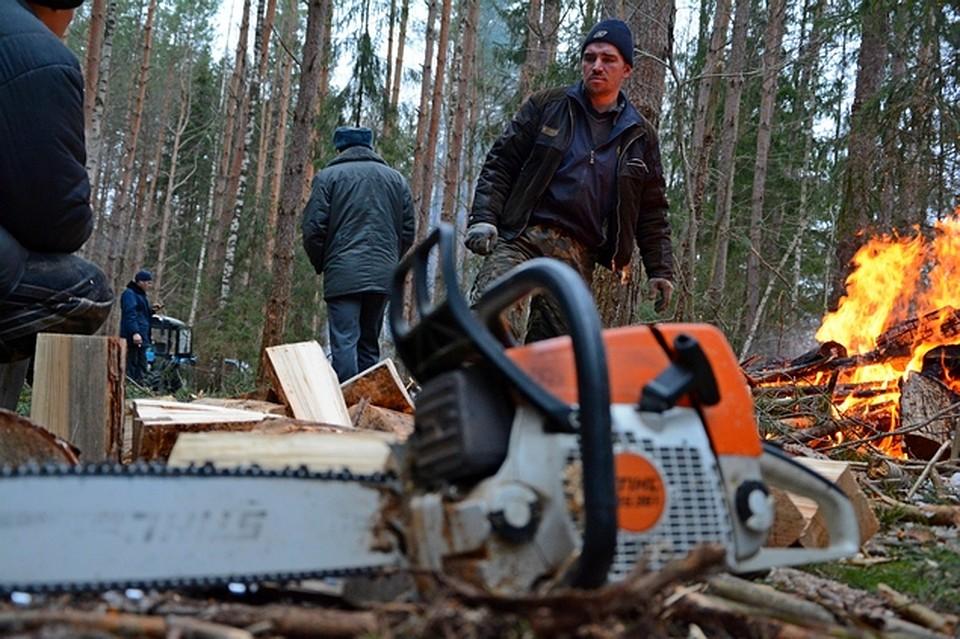 работа вахта осинский лесхоз иркутской обл фото живем