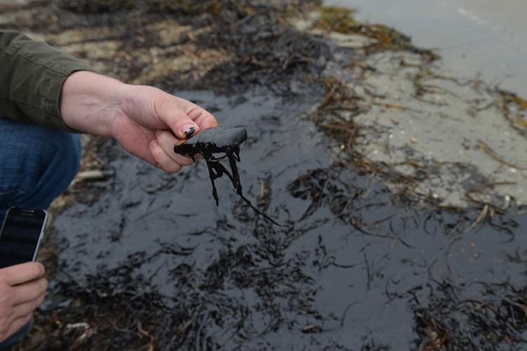 Размеры экологической катастрофы еще предстоит оценить
