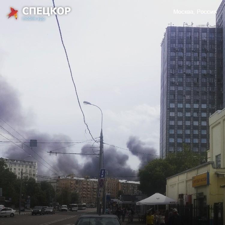 Фото Кристины Черкасовой, пользователя мобильного приложения «Спецкор» от «Комсомольской правды»
